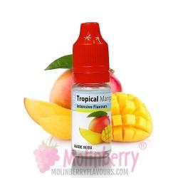 Tropical Mango DIY 10ml MolinBerry